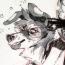 sunn wolf